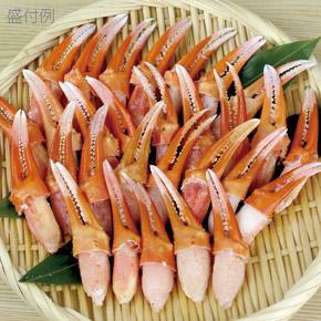 【メーカー休売中】日本海冷凍魚)紅ズワイ爪肉 L 500g【季節限定10-2月】