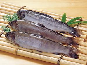 岐阜県産)冷凍岩魚 1kg (10尾)【旧商品 553346 からの切り替え】