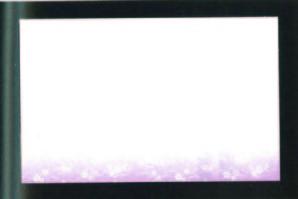 尺三まっと華かすみ なでしこ (SAK-08) 100枚入【12月より価格変更】
